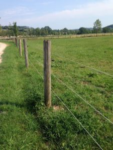 Bayco Horse Fencing X511 4,0 mm draad Wit Spool
