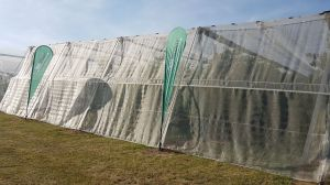 Insectennet 40 mesh wit 1,2m (B)