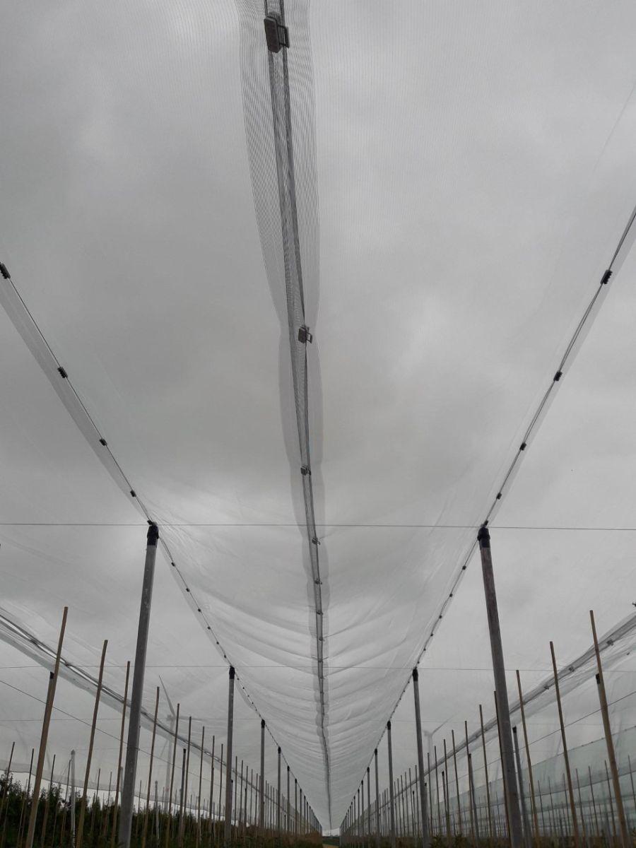 hailnet type wiesel crystal 28m