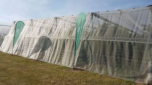 Insectnet 40 mesh white 1,2m (W)