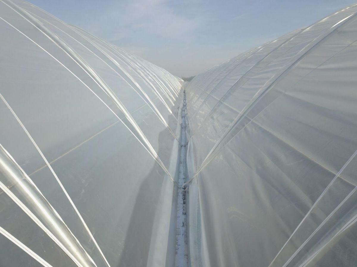 tunnel tension strap white