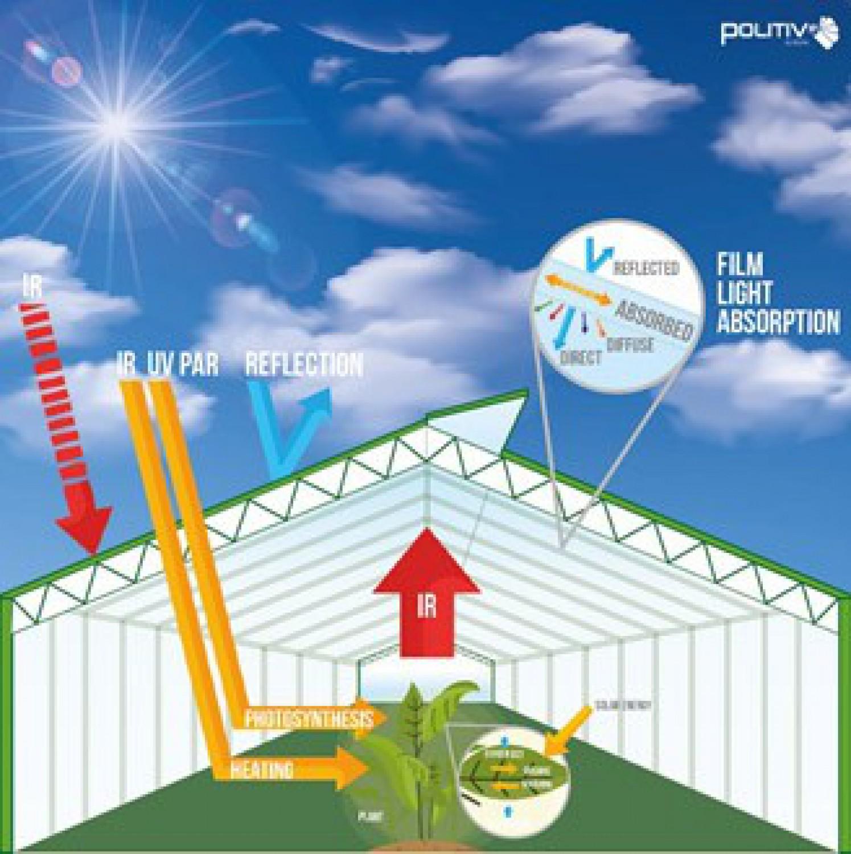 Tunnelfolie: Licht en zonneschijn