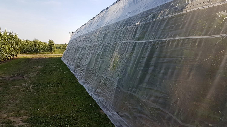 Reducing spray drift with Suzuki mesh